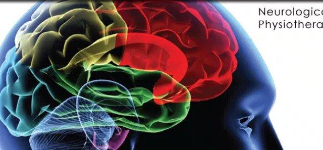 fisioterapia neuro-lógica